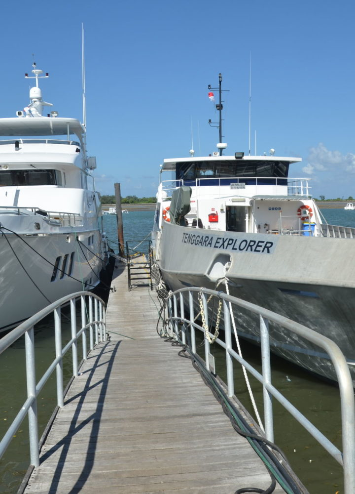boats-habor